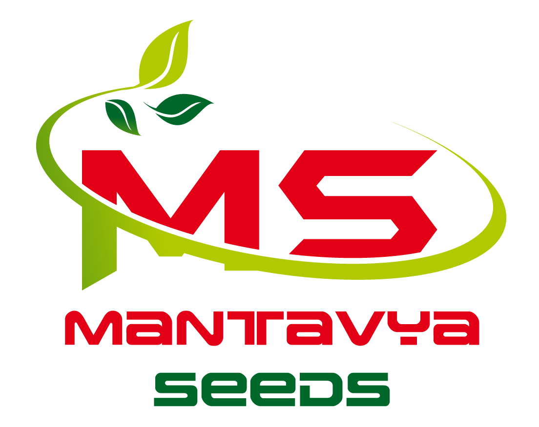 MANTAVYA SEEDS PVT. LTD